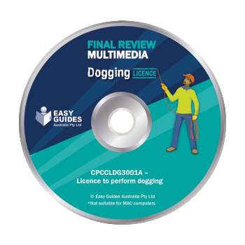 Dogging-Final-Review-Multimedia